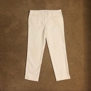 The Riviera Pant by Loft